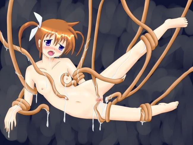 【エロ同人・エロ漫画】魔法少女リリカルなのはのフルカラーエロ画像を100枚ほどドゾwwwwwwwwwwwwwwwwwwwww (22)
